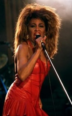 Tina Turner Son Craig Hill